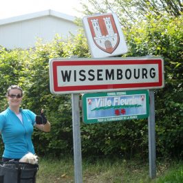 Mountain Bike Tour: Viernheim – Weissenburg