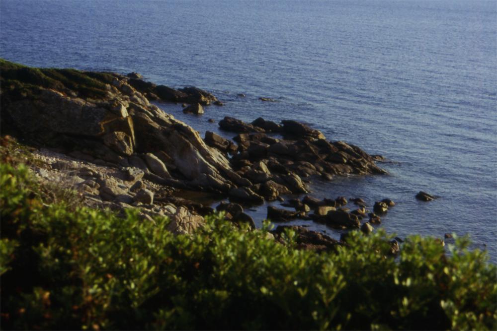 Korsika6