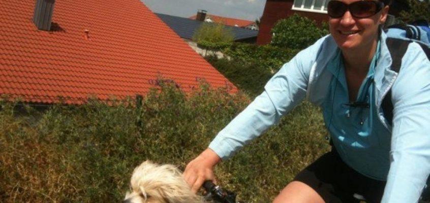 Autofahrt mit Hund: Meine Tipps für Dich