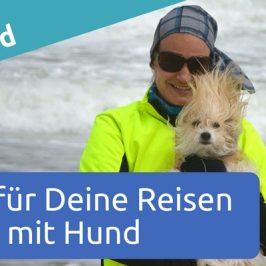 Tipps für Deine Reisen mit Hund