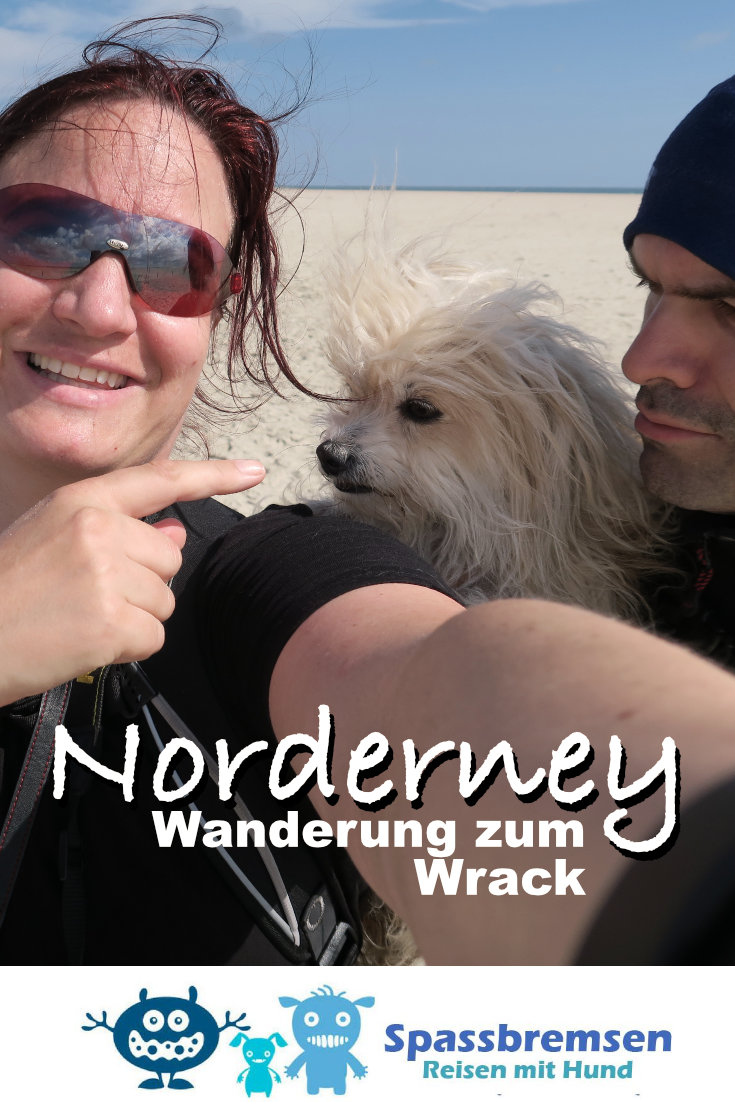 Norderney Wrack