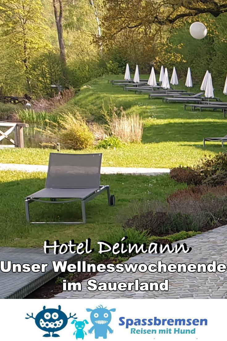 Wellnessurlaub mit Hund im Sauerland