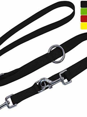 DDOXX Hundeleine Nylon, 3fach verstellbar, 2m | für kleine & große Hunde | Doppel-Leine Zwei Hund Katze Welpe | Schlepp-Leine groß | Führ-Leine klein | Lauf-Leine Welpen-Leine | L, Schwarz